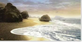 Bodega Beach I